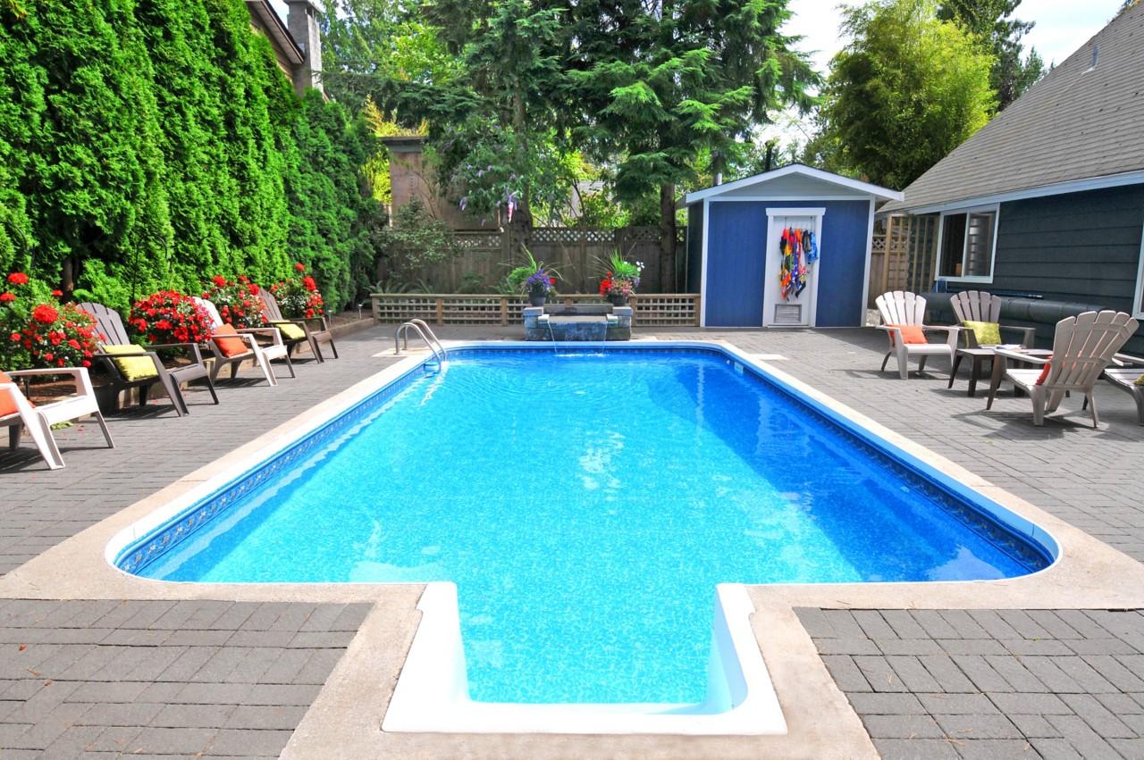 frozen pool in winter