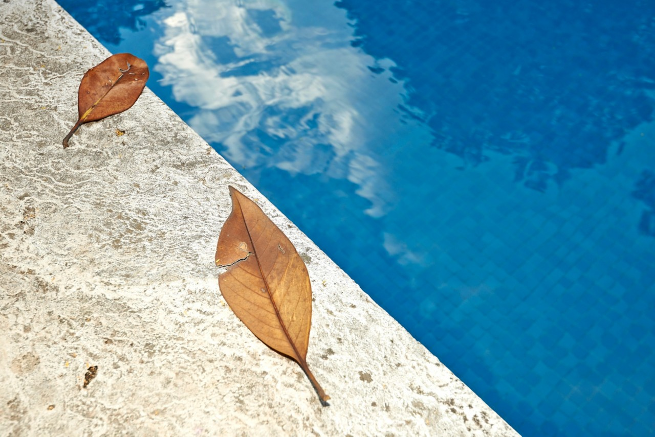 Fall orange leaves on the edge of a blue swimming pool water