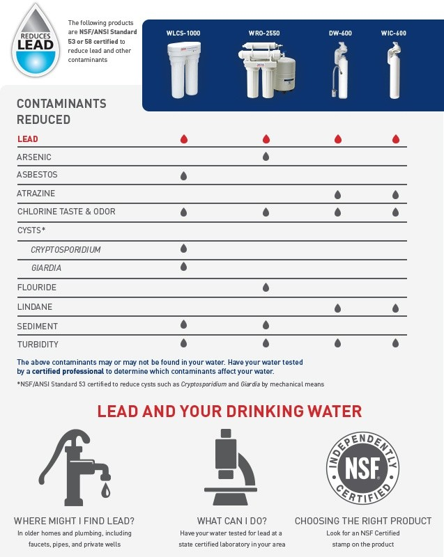 get the lead out infograph