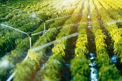 Farm sprinklers