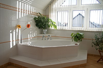 Bathtub Image