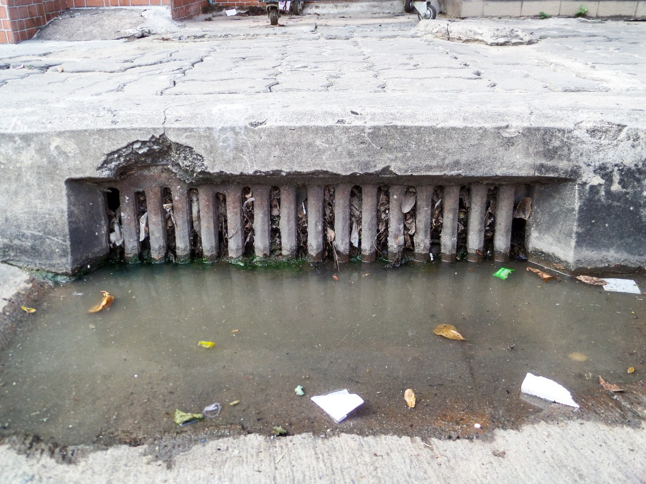 water cannot drain because drainage clogs by waste and garbage and dry leaves