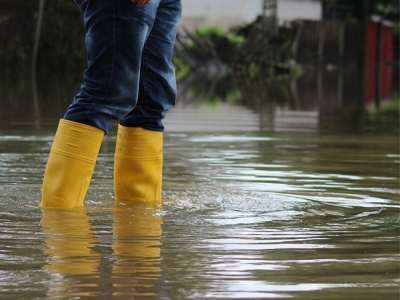 Rubber boots with flood