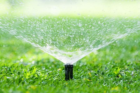 An automatic garden lawn sprinkler in action watering grass.